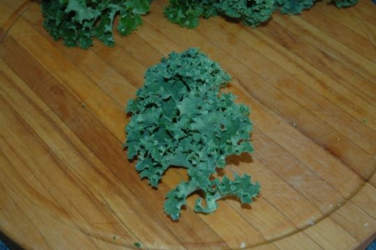 one leaf of kale